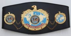WKF-World-title-belt-300x154