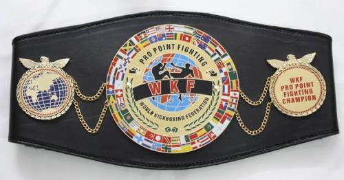 WKF-Pro-Point-Fighting-belt-500x262